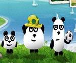 3 panda Brezilyada