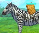 Zebra Yıkama